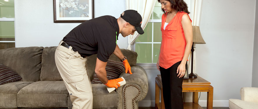 Auburn, IN carpet upholstery cleaning